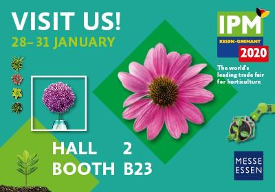 IPM 2020 – brezplačne vstopnice za člane sekcije cvetličarjev in vrtnarjev